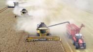 Mähdrescher bei der Weizenernte in Mecklenburg-Vorpommern. Dort sind die Kaufpreise für Agrarland besonders stark gestiegen.