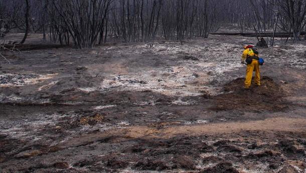 """Buschbrände hinterlassen """"Mondlandschaft"""""""