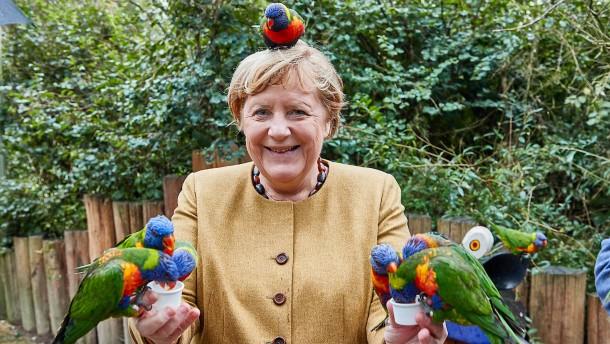 """Merkels """"Arrivederci"""" im Wahlkreis 15"""
