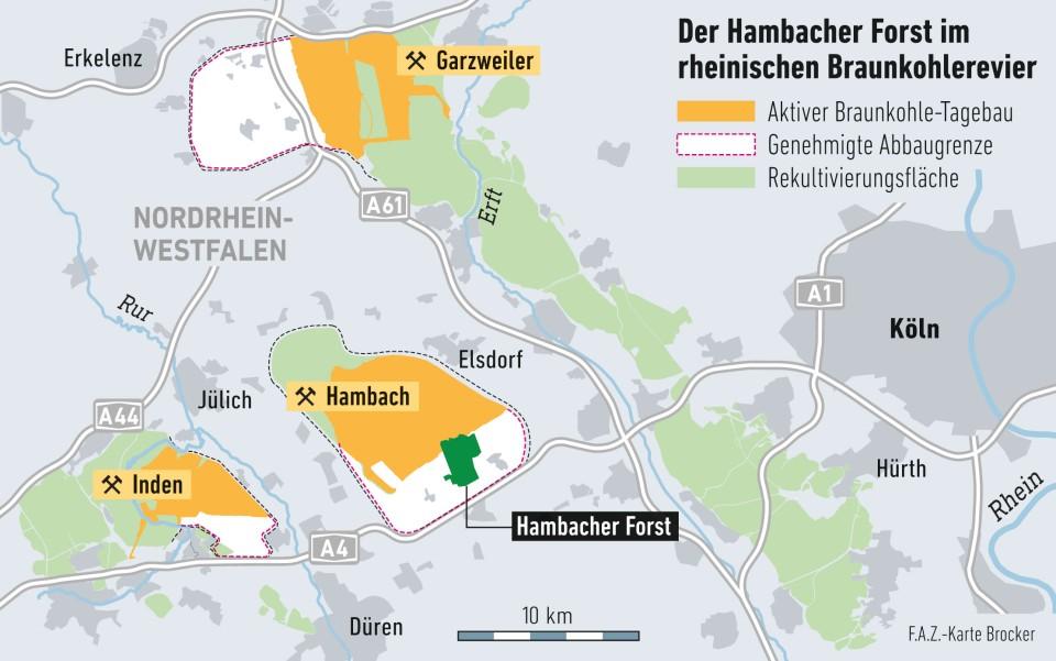 hambacher forst karte Bilderstrecke zu: Wer wohnt im Hambacher Forst?   Bild 5 von 5   FAZ
