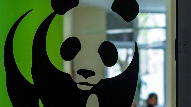 Staatliche Förderbank setzt Zahlung für ein WWF-Projekt aus