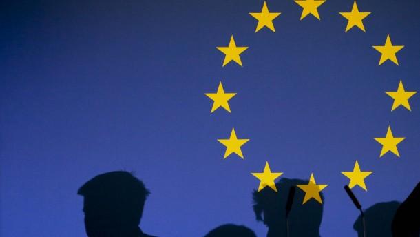 Ein Jahr für Europa