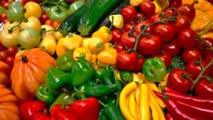 Landwirtschaftsmesse  mit Aussteller-Rekord