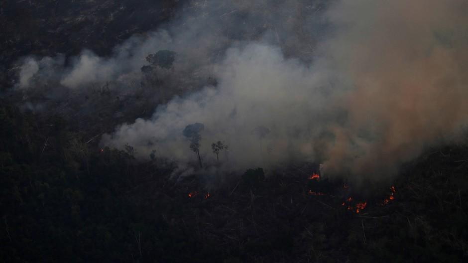 Tausende Brände wüten im Amazonasgebiet in Brasilien und anderen Ländern Südamerikas.