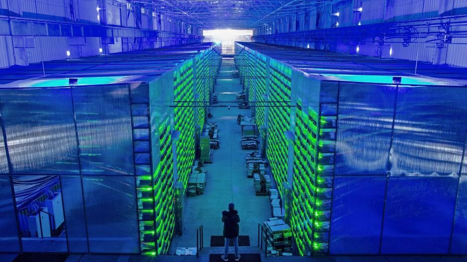 Ein Arbeiter inspiziert eine Bitcoin-Farm in Russland.