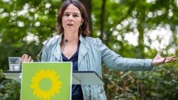 Grüne wollen Klimaschutz-Ministerium
