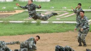 Militäretat steigt um 11,2 Prozent