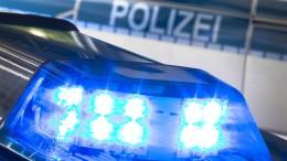 Mann schießt in Wohnung und tötet Polizeihund