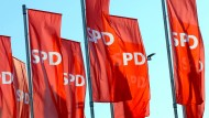 Andrea Nahles und Olaf Scholz wollen die SPD wieder zur Volkspartei machen.