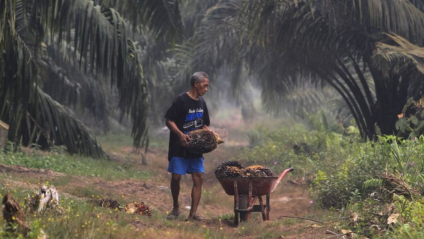 Indonesien plant WTO-Klage gegen EU-Zölle