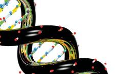 Google veröffentlicht Künstliche Intelligenz zur Genom-Entschlüsselung