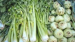 Wie schmeckt eigentlich Gemüse?