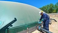 Gülle zu Gold: Chile setzt auf Biogas