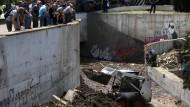Entlaufener Tiger tötet Mann in Tiflis