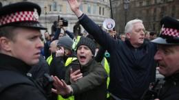 Demonstranten in London fordern Neuwahl