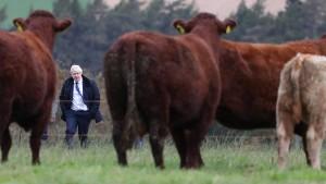 Ökonomen streiten über No-Deal-Brexit