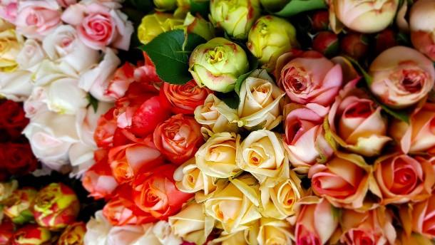 Hoffen auf besonders große Blumensträuße