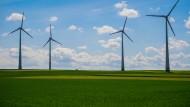 Vier Windkraftanlagen stehen auf einem Feld bei Mainz
