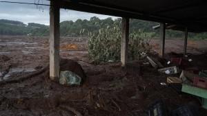 Wer wusste was vor dem Dammbruch in Brasilien?