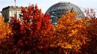 Herbst der Unsicherheit: Wie sieht die Bundesregierung aus, wenn die Blätter erst gefallen sind?
