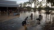 Schwere Stürme in Mexiko