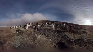 Die Antarktis im Wohnzimmer