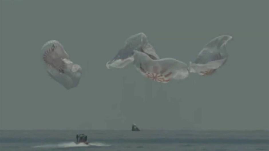 Vier Fallschirme haben die Dragon-Kapsel auf dem Weg zur Erde abgebremst, bevor sie im Golf von Mexiko landete.