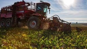 Mieses Zeugnis für EU-Agrarreform