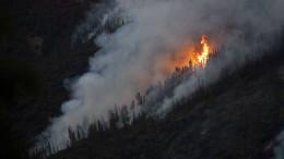 Heftiger Waldbrand bedroht Nationalpark