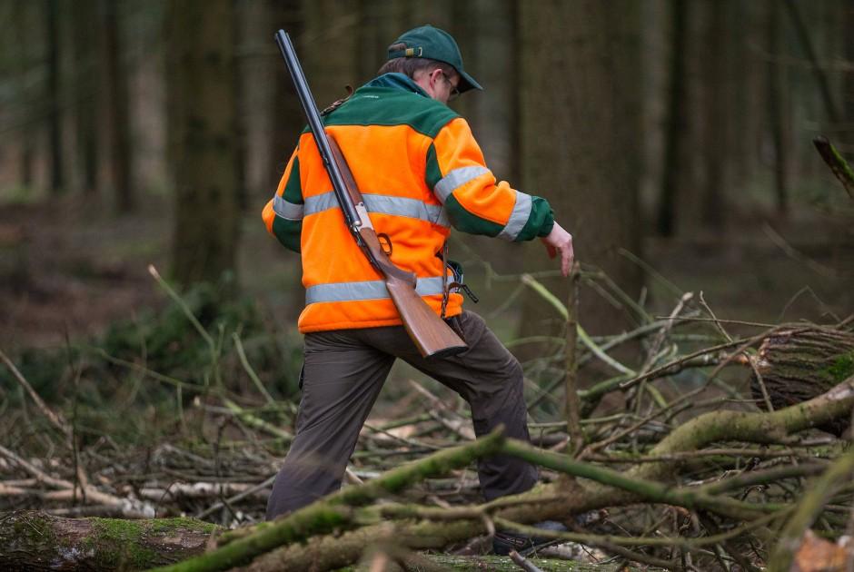 Ein Treiber mit einer geschulterten Flinte bei einer Drückjagd durch ein Waldstück in Bielefeld
