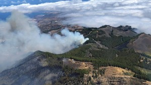 Waldbrand auf Gran Canaria dauert an