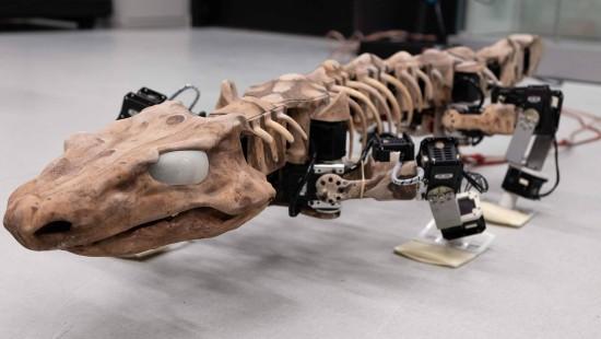Dieses Fossil kann laufen