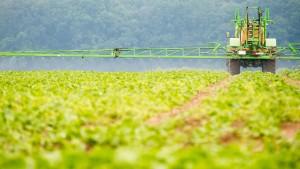 Deutschland leitet Glyphosat-Ende ein