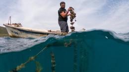 Kroatische Fischer hoffen auf Grenzöffnung