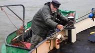 Fischer Hell und das Geheimnis der Flüsse