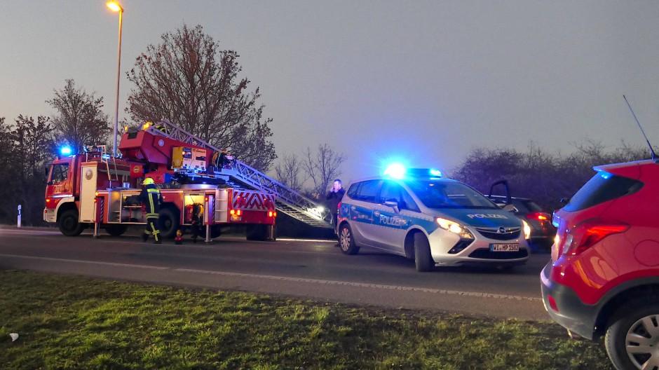 Einsatzkräfte sichern am Samstag den Bereich im hessischen Biebesheim, in dem eine Frau tot in einem Gebüsch gefunden wurde.