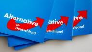 Mainzer Spitzenkandidat der AfD angeklagt