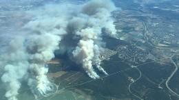 Waldbrand bedroht Wohnhäuser