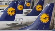 Die Kraniche der Lufthansa bleiben am Mittwoch wohl am Boden