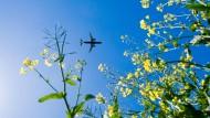 Ein Flugzeug im Anflug auf Hannover. Ob sich die Passagiere darin wohl schämen?