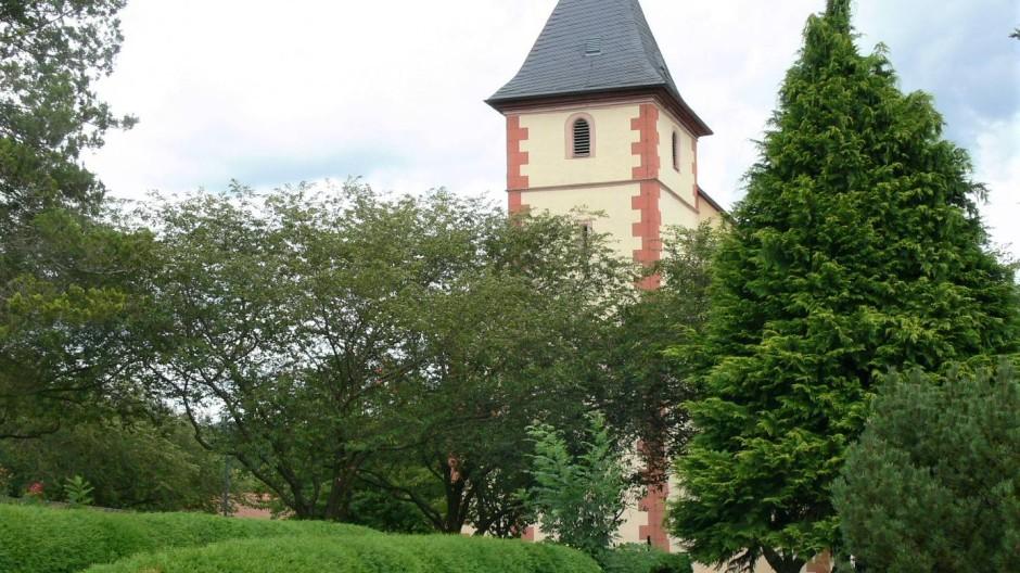 Ursprünglich als Wegbepflanzung auf dem Friedhof an der Kirche St. Vitus angelegt, entwickelten sich der Lebensbaum zu flächenhafter Gräberfassung.