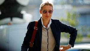 Alice Weidel, die AfD und die Toleranz