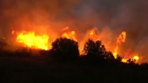 Waldbrände wüten in Griechenland