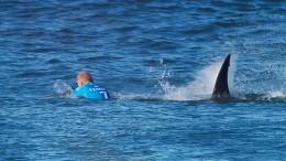 Brite schlägt Hai angeblich mit Fausthieb in die Flucht