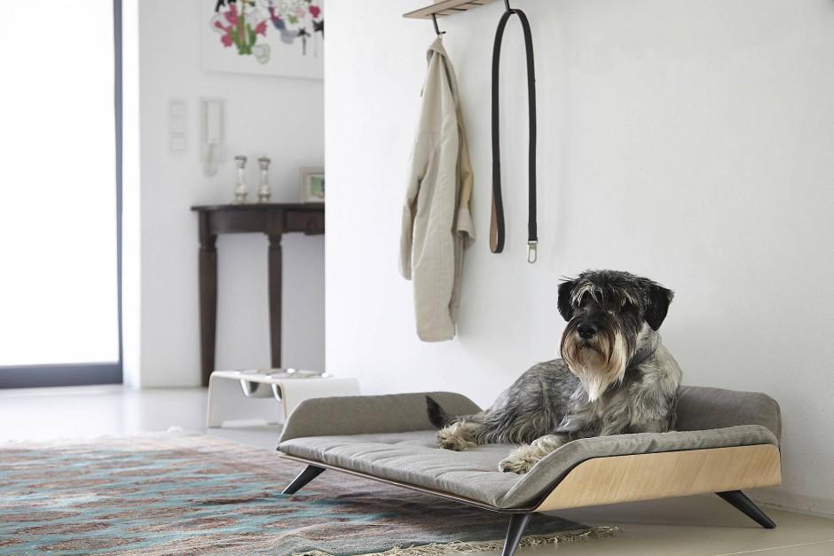 designbranche m bel f r hund und katze. Black Bedroom Furniture Sets. Home Design Ideas