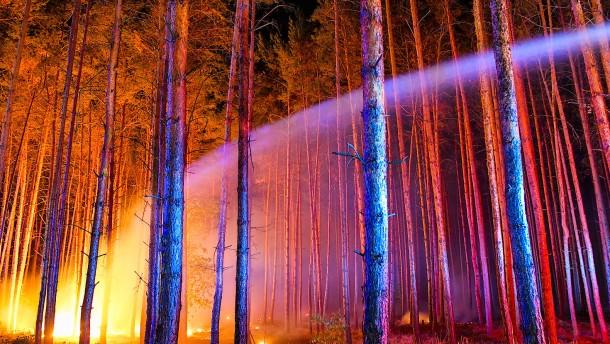 Hunderte Feuerwehrleute kämpfen gegen die Flammen