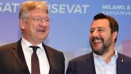 Mit vereinten Kräften zur zweitstärksten Kraft im Europaparlament? Italiens Innenminister Matteo Salvini und der Co-Vorsitzende der AfD, Jörg Meuthen