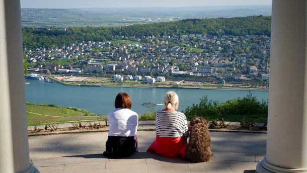 Befürworter von Rheinbrücke gründen Bürgerinitiative