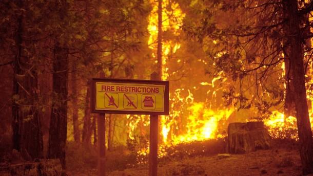 Waldbrände erreichen Yosemite-Nationalpark