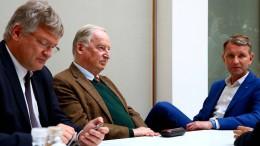 Warum der Verfassungsschutz nun die AfD beobachtet